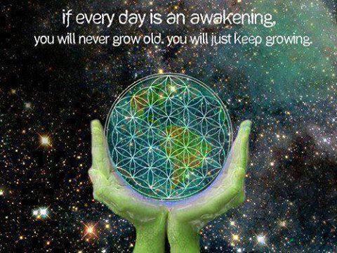 Awaken to your Enlightenment!